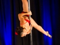 Northeast Aerial Arts Pole Dancing Competition